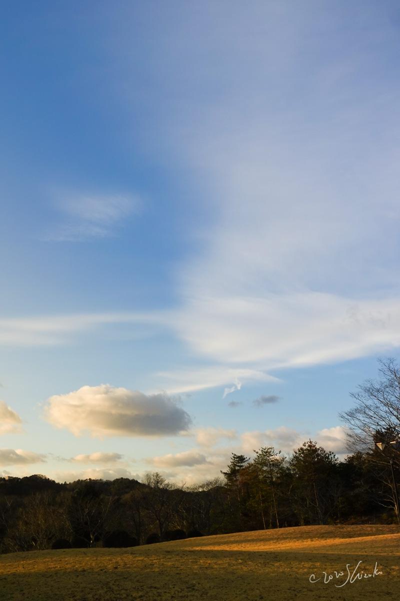美作市公園と空